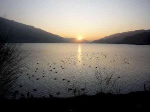Alpsee Sonnenuntergang-1080-W620