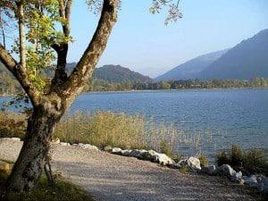 schöner Blick auf den Alpsee-1080-W620